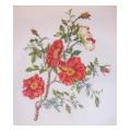 Red Blossom Needlepoint Canvas